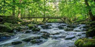 Sungai Kehidupan di Akhirat