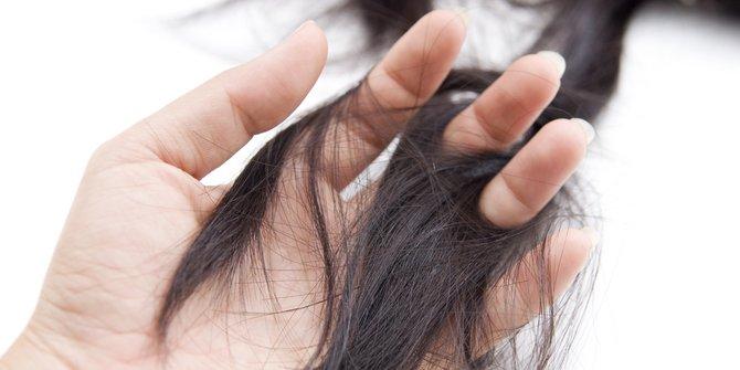 meminyaki dan menyisir rambut