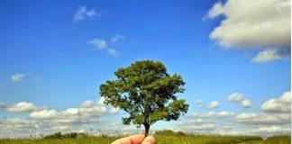 menjaga alam