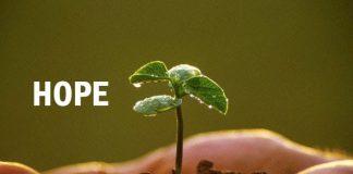 Cita-Cita dan Harapan