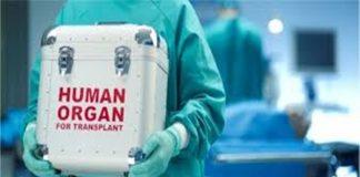 mendonorkan organ tubuh