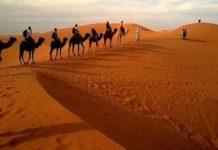 Afrika Utara Ulama Tabi'in