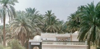 Abu Muhajir Dinar
