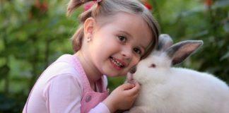 Hadis Rasulullah Menyayangi Hewan