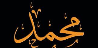 binatang liar berebut Muhammad