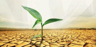 wakaf tanah tanpa ikrar